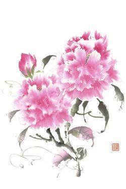 Peonie Blossoms II by Nan Rae