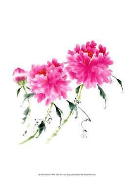 Peonies in Pink III by Nan Rae