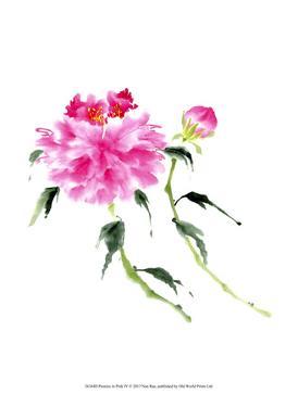 Peonies in Pink IV by Nan Rae