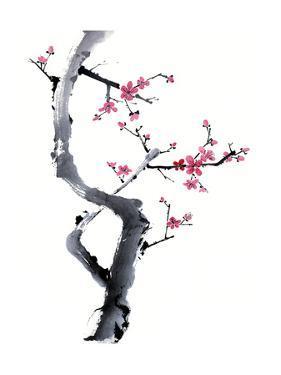 Plum Blossom Branch I by Nan Rae