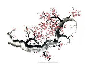 Plum Blossom Branch III by Nan Rae