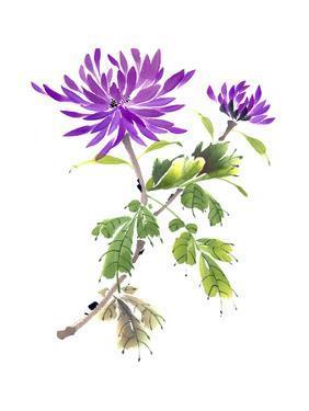 Purple Passion by Nan Rae