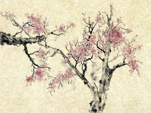 Springtime by Nan Rae