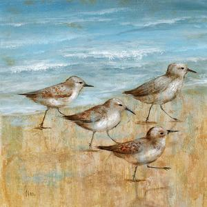 Sandpipers I by Nan