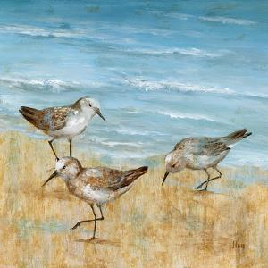 Sandpipers II by Nan