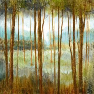 Soft Forest I by Nan