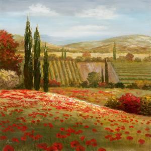 Tuscan Cypress I by Nan