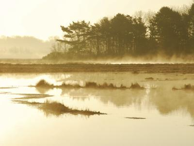 The Mist Rises over a Peaceful Dawn on the Marsh, Scarborough, Maine