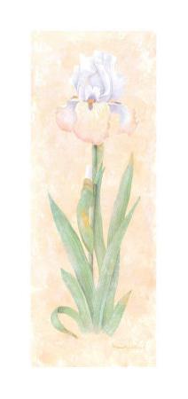 Iris Soliloquy II