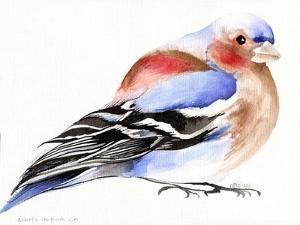 Colourful Chaffinch, 2011, by Nancy Moniz Charalambous
