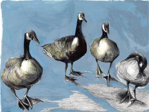 Friendly Canada Geese, 2012, by Nancy Moniz Charalambous
