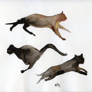 Run Cat Run, 2017, by Nancy Moniz Charalambous