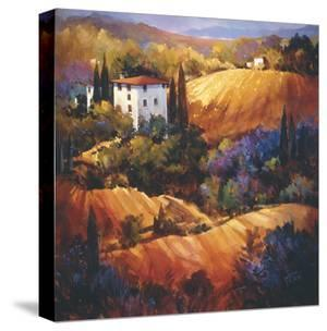 Evening Glow Tuscany by Nancy O'toole