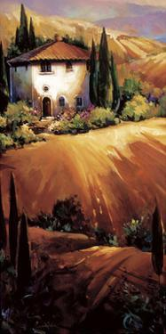 Golden Tuscany by Nancy O'toole