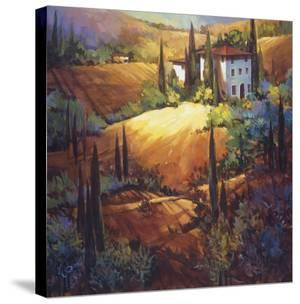 Morning Light Tuscany by Nancy O'toole