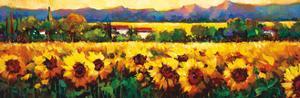 Sweeping Fields of Sunflowers by Nancy O'toole