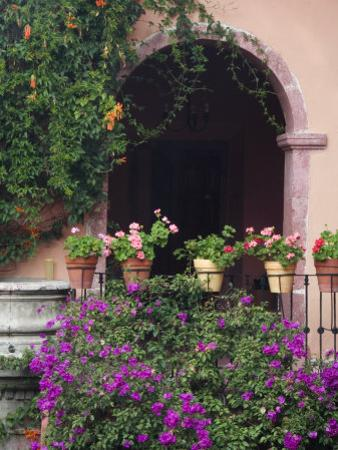 Bougainvillea and Geranium Pots on Wall in Courtyard, San Miguel De Allende, Mexico by Nancy Rotenberg