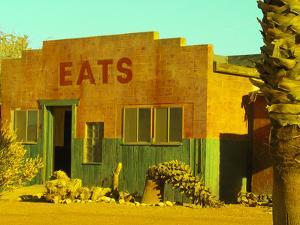 Abandoned Desert Eatery, Sloan, Nevada, USA by Nancy & Steve Ross