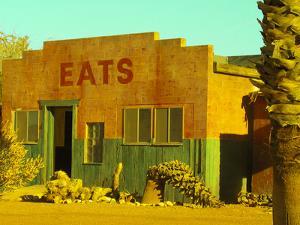 Abandoned Desert Eatery, Sloan, Nevada, USA by Nancy & Steve Ross