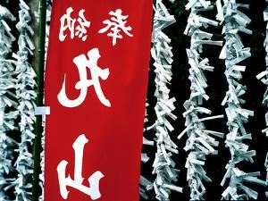 Fortune Papers at Shinto Shrine, Tokyo, Japan by Nancy & Steve Ross