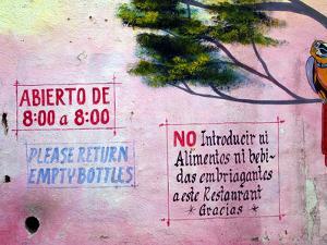 Painting of Parrot in Tree, Puerto Vallarta, Mexico by Nancy & Steve Ross