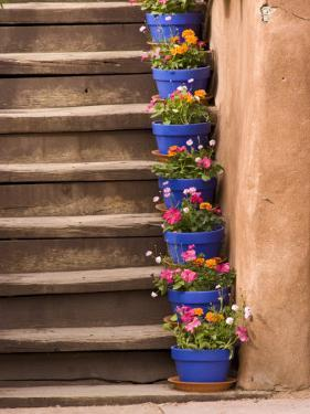 Staircase Decorated with Flower Pots, Santa Fe, New Mexico by Nancy & Steve Ross
