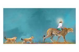 Cheetah Walk by Nancy Tillman