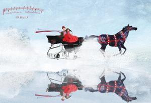 Dashing Through The Snow by Nancy Tillman