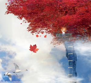 How High Can You Go? by Nancy Tillman