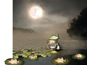 Sleepy Frog by Nancy Tillman