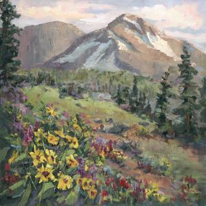 Western Vistas III by Nanette Oleson