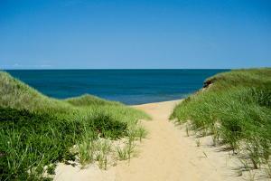 Nantucket Beach Dunes Photo Poster