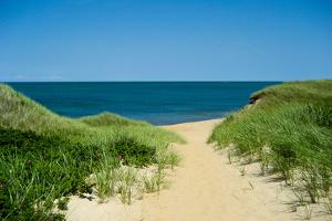 Nantucket Beach Dunes Plastic Sign