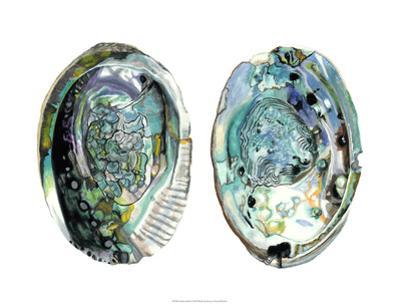 Abalone Shells I by Naomi McCavitt