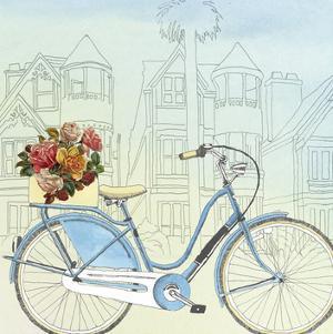 Biking Through San Francisco by Naomi McCavitt