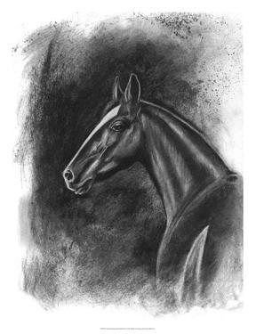 Charcoal Equestrian Portrait II by Naomi McCavitt