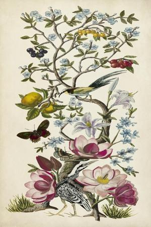 Chinoiserie Natura II by Naomi McCavitt