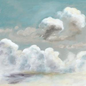 Cloud Study III by Naomi McCavitt