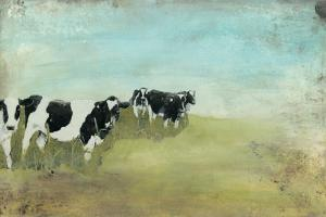 Country Drive Cows II by Naomi McCavitt