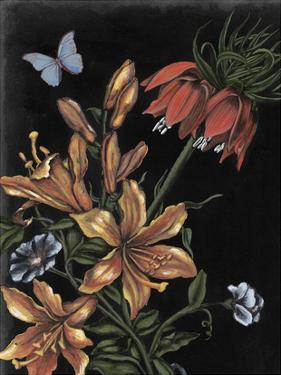 Dark Floral II by Naomi McCavitt
