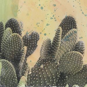 Desert Dreams II by Naomi McCavitt