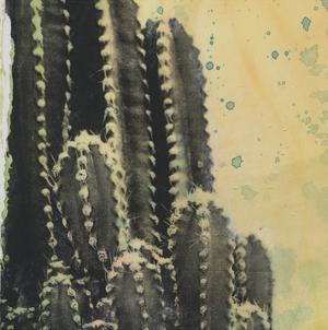 Desert Dreams IV by Naomi McCavitt