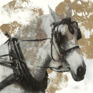 Driving Horses II by Naomi McCavitt