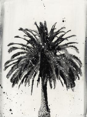 L.A. Dream I by Naomi McCavitt