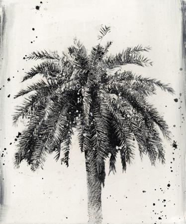 L.A. Dream II by Naomi McCavitt