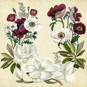 Magnolia & Poppy Wreath I by Naomi McCavitt