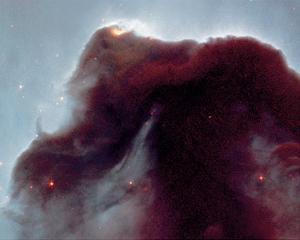 NASA - The Horsehead Nebula