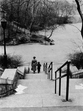 Central Park in Winter, c.1953-64 by Nat Herz