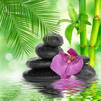 Spa Background - Black Stones and Bamboo on Water by Natalia Merzlyakova