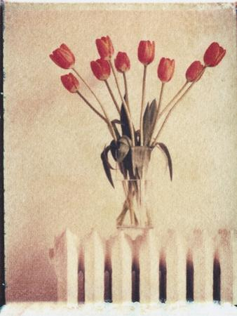 Vase of Tulips on a Radiator